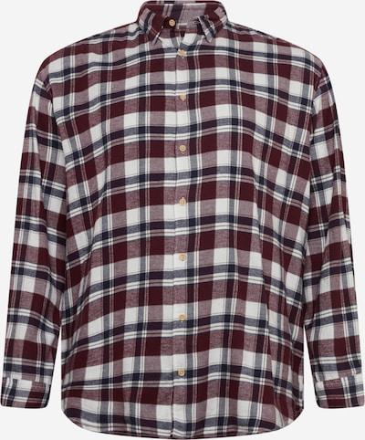 Jack & Jones Plus Hemd 'LAIN' in navy / weinrot / weiß, Produktansicht