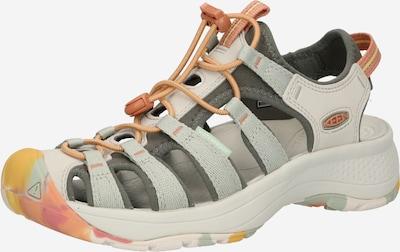 KEEN Sandale u bež / siva / tamo siva, Pregled proizvoda