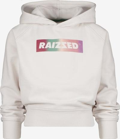 Raizzed Sudadera 'GALWAY' en gris claro / verde / lila / rosa / frambuesa, Vista del producto