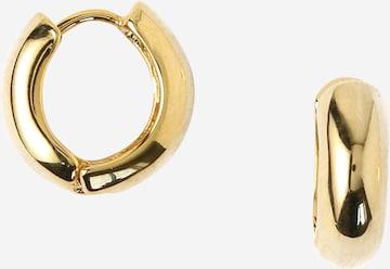 Orelia Øredobber i gull