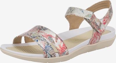 ARA Sandale 'Nepal' in mischfarben, Produktansicht