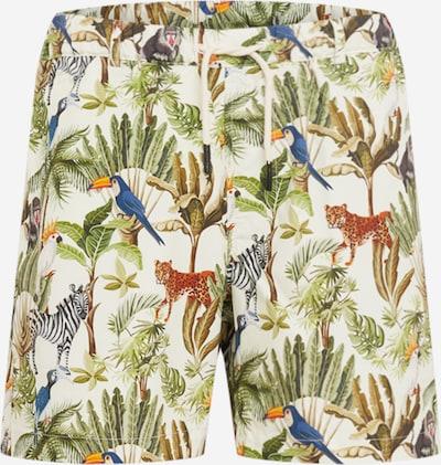 Pantaloni 'CATS' Wemoto pe bej / mai multe culori, Vizualizare produs