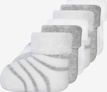 EWERS Socks in White