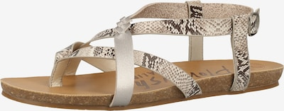 Blowfish Malibu Sandale in grau / silber / weiß, Produktansicht