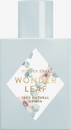 Juniper Lane L'Art du Parfum 'Wonderleaf' in transparent, Produktansicht