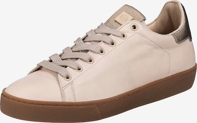 Högl Sneaker in rosegold / rosa, Produktansicht