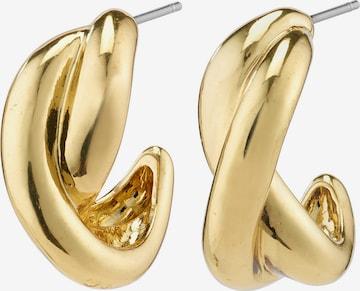 Pilgrim Σκουλαρίκια 'Belief' σε χρυσό