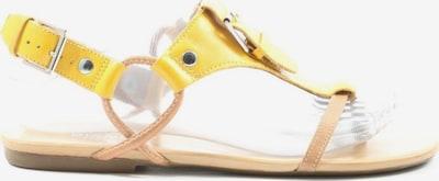 Bianco Riemchen-Sandalen in 38 in creme / pastellgelb, Produktansicht