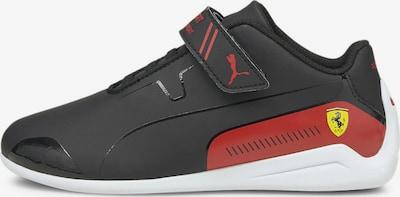 PUMA Sneaker 'Ferrari Drift Cat' in rot / schwarz, Produktansicht