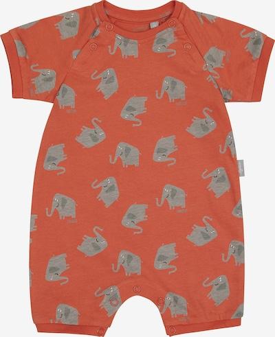 SIGIKID Schlafanzug in grau / orange, Produktansicht