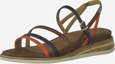 Sandale cu baretă TAMARIS pe bleumarin / maro / maro coniac, Vizualizare produs