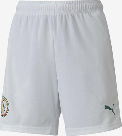 PUMA Sporthose 'Senegal' in grün / orange / rot / weiß, Produktansicht