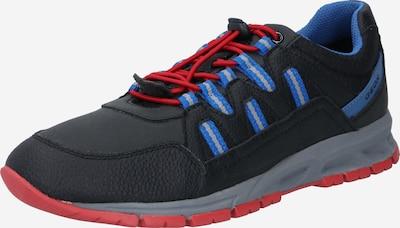 GEOX Zemie brīvā laika apavi, krāsa - zils / sarkans / melns, Preces skats