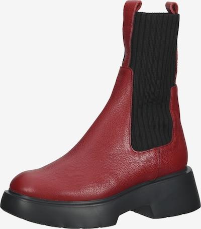Wonders Chelsea Boots en rouge foncé / noir, Vue avec produit