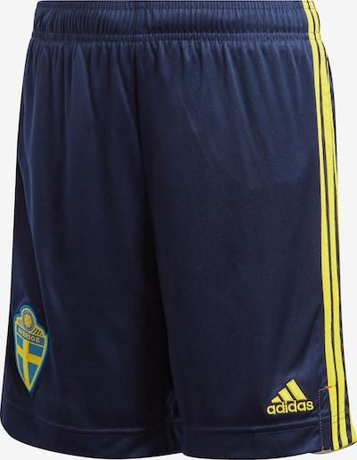 ADIDAS PERFORMANCE Hose in blau / gelb: Frontalansicht