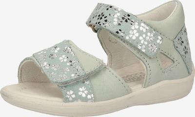 Pepino Sandalen in de kleur Pastelblauw / Mintgroen / Zilver, Productweergave