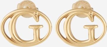 GUESS Øredobber i gull