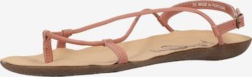 FLY LONDON Sandale in Pink