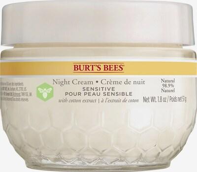 BURT'S BEES Sensitive Night Cream in gelb / weiß, Produktansicht