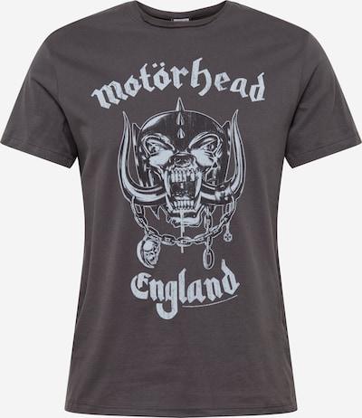 AMPLIFIED T-Shirt en taupe / gris clair / gris foncé, Vue avec produit