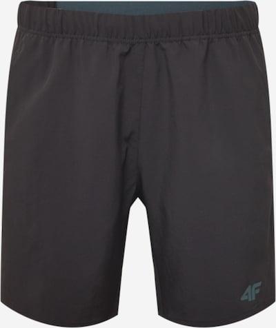 4F Športové nohavice - čierna, Produkt