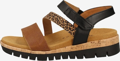 GABOR Sandalen in beige / braun / schwarz, Produktansicht