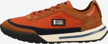 Baskets basses SCOTCH & SODA en marron