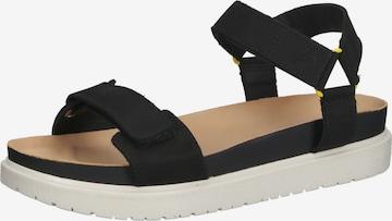 Sandales de randonnée CAMEL ACTIVE en noir
