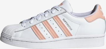 ADIDAS ORIGINALSTenisice 'Superstar' - bijela boja