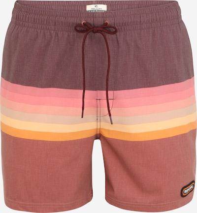 RIP CURL Shorts de bain 'VOLLEY' en rouille / abricot / rose / lie de vin, Vue avec produit