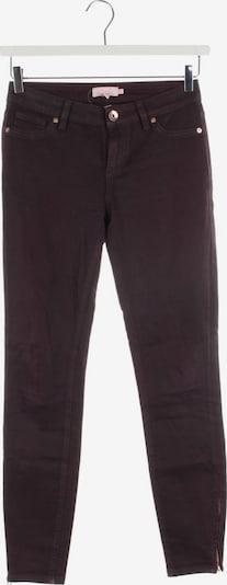Ted Baker Jeans in 26 in weinrot, Produktansicht