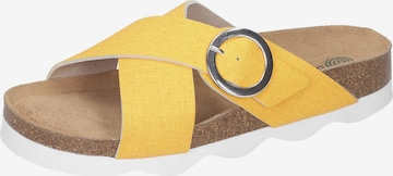 DR. BRINKMANN Mules in Yellow