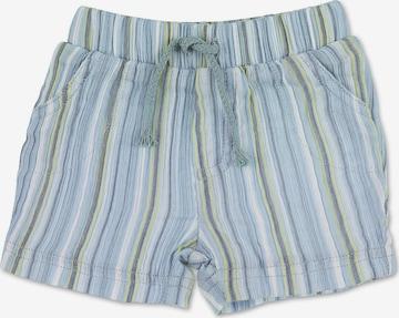 STERNTALER Trousers in Blue