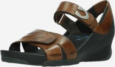 Wolky Sandale in braun / schwarz, Produktansicht