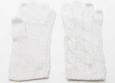 POLO RALPH LAUREN Handschuhe in XS in weiß, Produktansicht