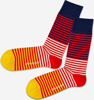 DillySocks Ponožky - námornícka modrá / žltá / červená / biela, Produkt