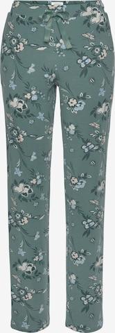 SCHIESSER Pyjamahose in Grün
