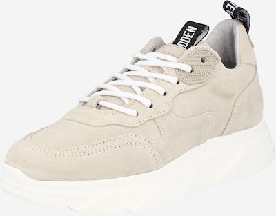 STEVE MADDEN Sneaker 'PITTY' in beige, Produktansicht