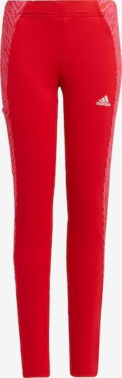 ADIDAS PERFORMANCE Sporthose 'Designed 2 Move' in magenta / rot / weiß, Produktansicht
