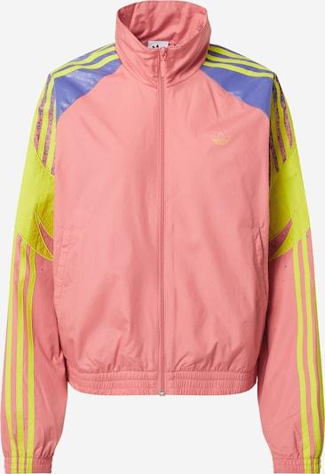 Giacca di mezza stagione ADIDAS ORIGINALS di colore blu reale / giallo / rosa, Visualizzazione prodotti