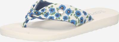 ESPRIT Séparateur d'orteils 'Hilda' en bleu / vert / blanc cassé, Vue avec produit