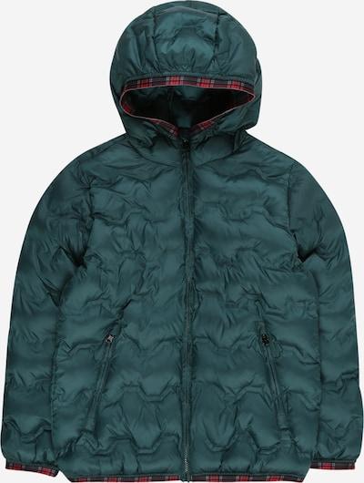 UNITED COLORS OF BENETTON Jacke in dunkelgrün, Produktansicht