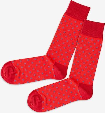 DillySocks Socks in Red