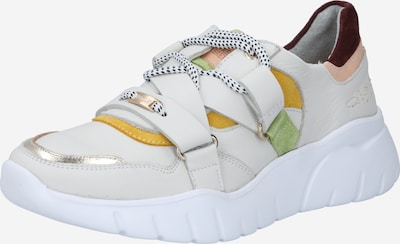 Fred de la BretoniÈre Sneaker in creme / goldgelb / apfel / pfirsich / bordeaux, Produktansicht