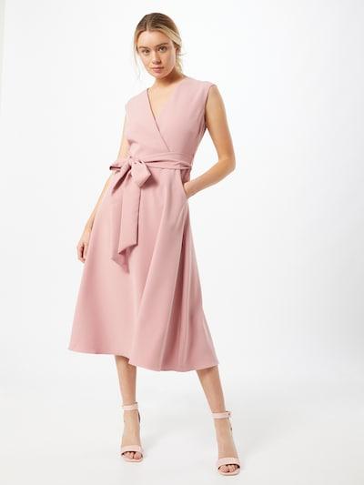 Dorothy Perkins Kleid 'Lillie and Frank' in rosé, Modelansicht