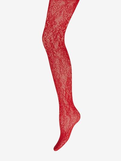 Wolford Collant 'Phyllis' en rouge rubis, Vue avec produit