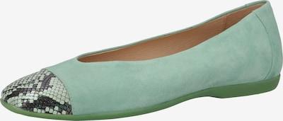 Wonders Ballerina in de kleur Donkergrijs / Mintgroen / Pastelgroen, Productweergave