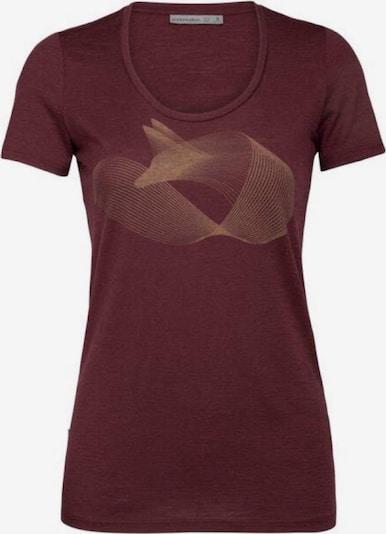 ICEBREAKER T-Shirt in braun, Produktansicht