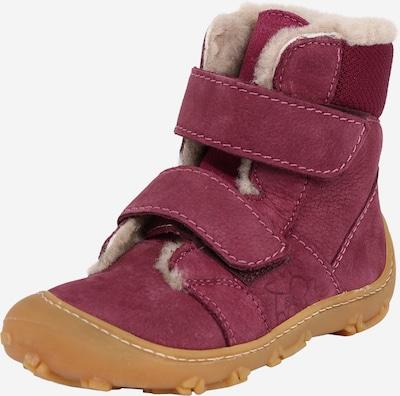 Pepino Snowboots 'ELI' in kitt / pitaya, Produktansicht