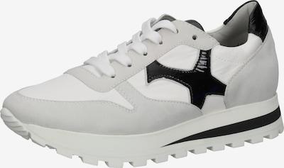 PETER KAISER Sneaker in grau / schwarz / weiß, Produktansicht